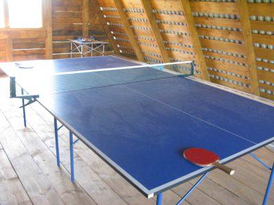 Пинг-понг в Жуковке