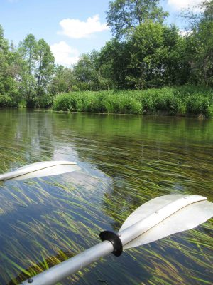Река Судогда - чистая вода
